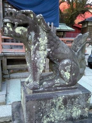 本庄神社の狛犬【阿形】横の写真