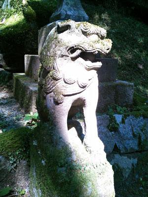 後鳥羽神社の狛犬【阿形】正面の写真