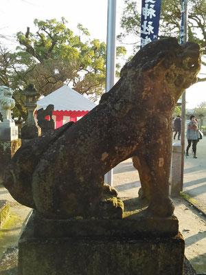 與止日女神社の狛犬【阿形】横の写真(拝殿側から撮影)