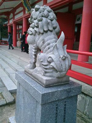 赤間神宮の狛犬02番【阿形】お尻の写真
