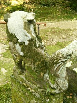 後鳥羽神社の狛犬【吽形】お尻の写真