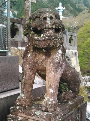 陶山神社の狛犬06番【阿形】アップの写真