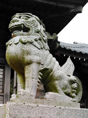 陶山神社の狛犬07番【阿形】横の写真