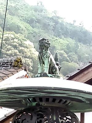 陶山神社の狛犬02番【吽形】アップの写真