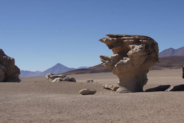 Der Steinbaum (Arbol de Piedra) ist ein bekanntes Fotomotiv auf Reisen durch Bolivien