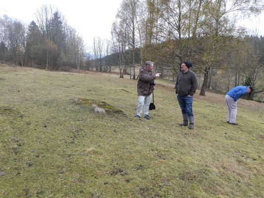 Die Bischofsreuter Waldhufen sind eine Kulturlandschaft mit wertvoller Natur. Foto: Inge Steidl