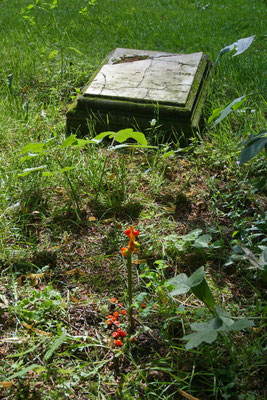 Tempel der Ruhe, privater Friedhof der Familie von Bodelschwingh | 08/2015