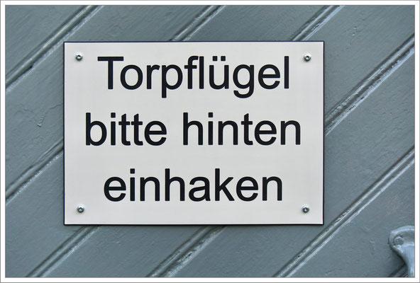 Eigentlich ist die Deutsche Sprache doch gar nicht so schwer. Jedenfalls ist sie ziemlich variantenreich. Der Pflug - die Pflüge Der Flügel - Die Pflügel - oder?