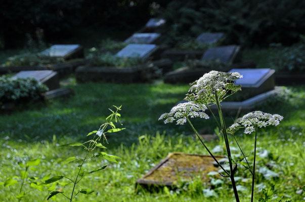 Tempel der Ruhe, privater Friedhof der Familie von Bodelschwingh