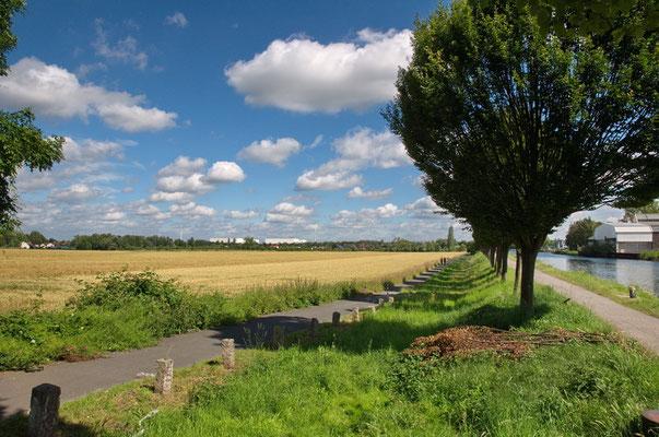 Unmittelbar hinter dem Fredenbaumpark, Richtung Norden, öffnet sich die Stadtlandschaft, das ländliche Dortmund beginnt hier ebenso wie der Treidelpfad, entlang des Dortmund - Ems - Kanals.