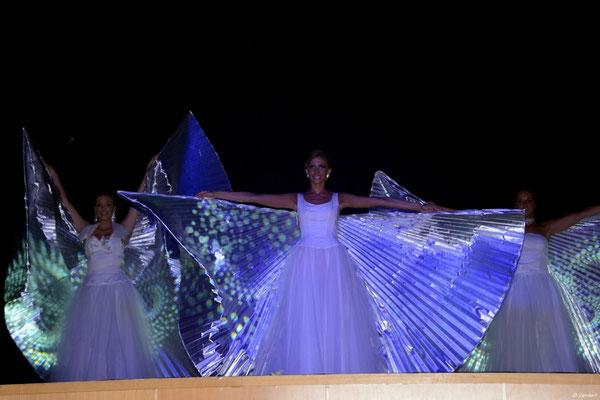 Miss 2014_004ED