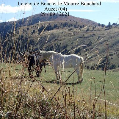 Le clôt de Bouc et le mourre Bouchard