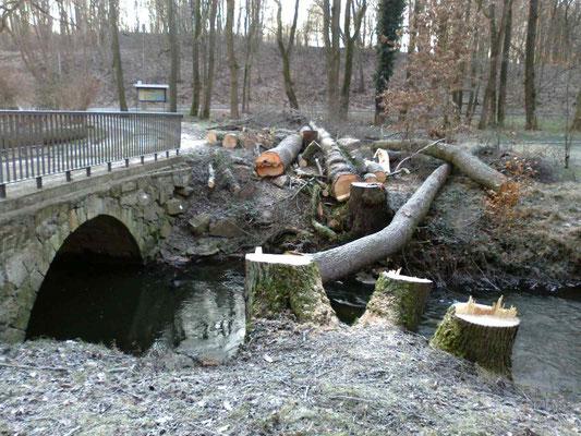 Hüttermühle Brückenbau 4