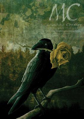 Les Sombres Romantiques - illustration de couverture - Editions du Riez - Mathieu Coudray