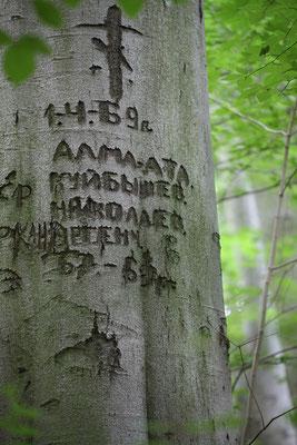Kutschera, Andreas