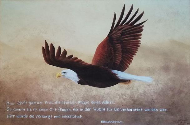 Die starken Flügel eines Adlers