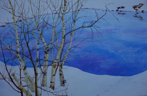 2012 Quiet winterlandscape II   acrylic paint on linen 80 x 120 cm.