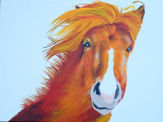 "2014 ""Be alive""  Acrylic-paint on linen 60 x 80 cm."