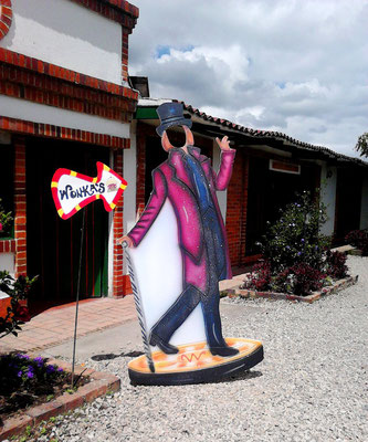 Willy Wonka themed party en Cajicá