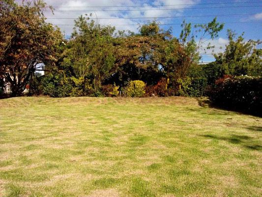 Zona verde Eventos Casa El Misterio