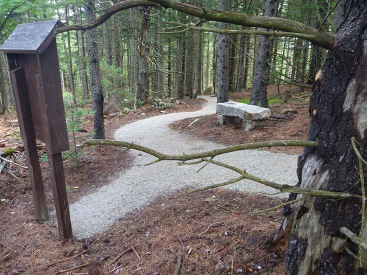 Kiosks and and granite slabs were repurposed in various spots along the trail.  This kiosk will educate visitors about the sustainable forestry practices taking place on this parcel of town forest