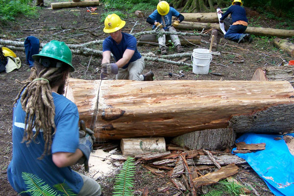 Crosscutting to make a single log bench, SCA advanced timber skills workshop, Carnation, WA, 2008