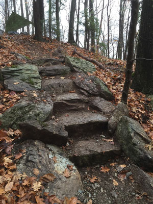 A stone staircase on a newly relocated section of the Appalachian Trail, Williamstown, MA, 2014