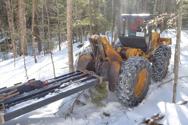 The skidder and the beams