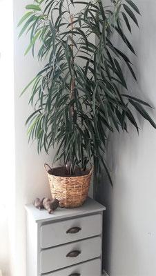 Idée déco de salon by Fannygloo : meuble de famille relooké, plante et panier...