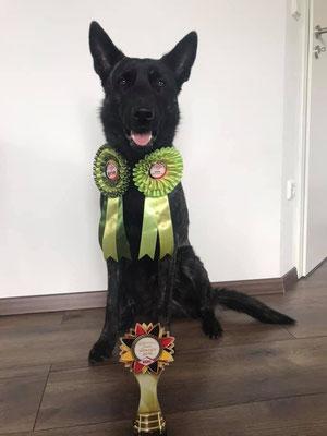 Acco-German Junior Winner 2019