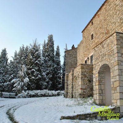 Inverno: neve davanti al castello • Winter: snow in front of the castle [Susanna Cioni]