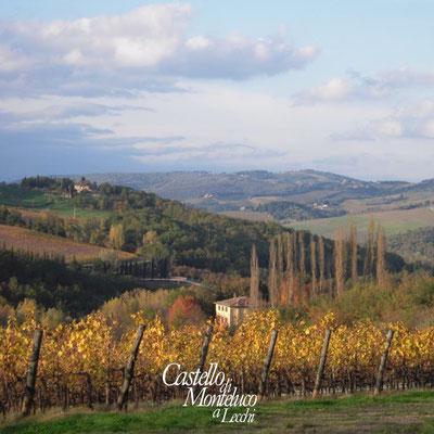 Scorcio del Chianti in Autunno • Glimpse of Chianti in Autumn