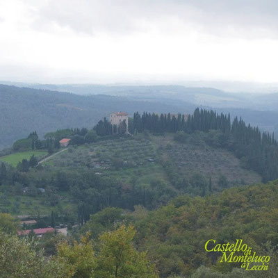 La collina di Monteluco • The hill of Monteluco.