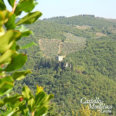 Il Castello di Tornano visto da Monteluco   View of Tornano castle from Monteluco