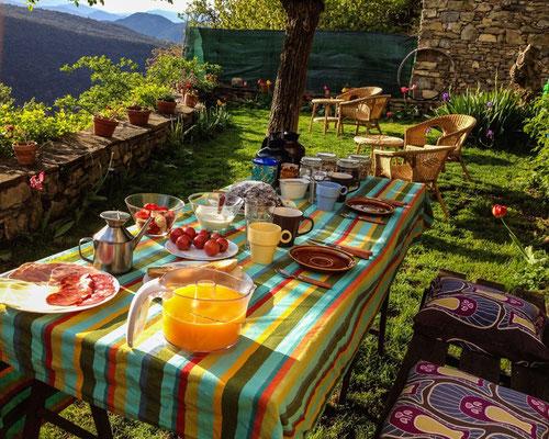 Desayunos en el jardín