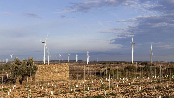 Proyecto planificado, diseñado y desarrollado por Eolic Partners: Parques Eólicos Torre Madrina, Coll del Moro y Vilalba dels Arcs. Terra Alta, Cataluña, España. Inaugurados entre el 2010 y 2012 -Copyright Eolic Partners