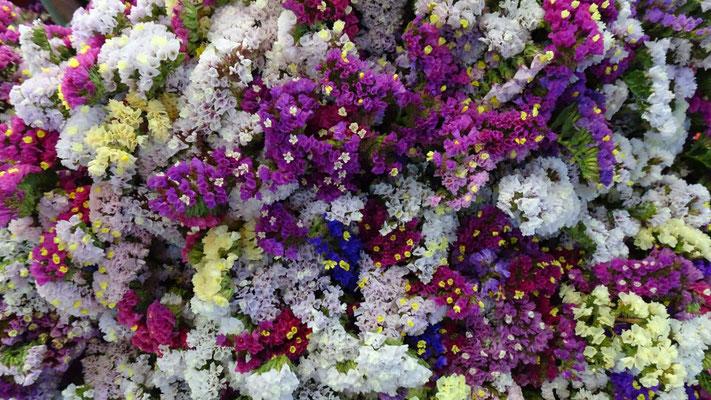 Mercado de flores Jamaica - Mexico City