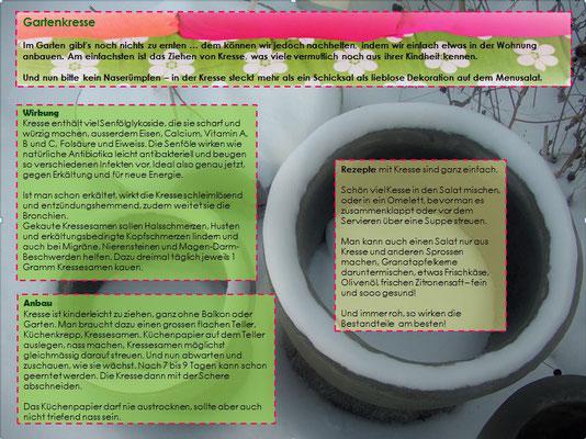 Textplantage_Monatsblatt Februar 2017