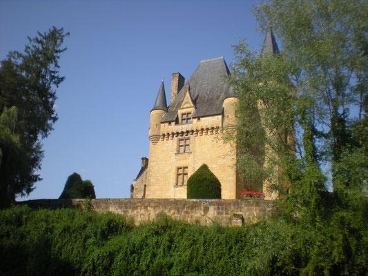 Chateau de St Leon sur Vezere