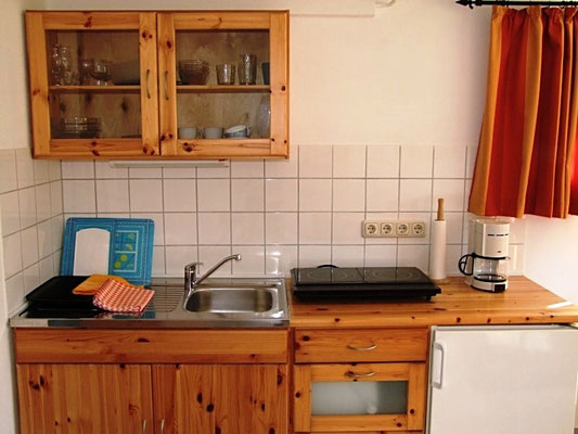 Die Küche mit neuer Induktionskochfläche