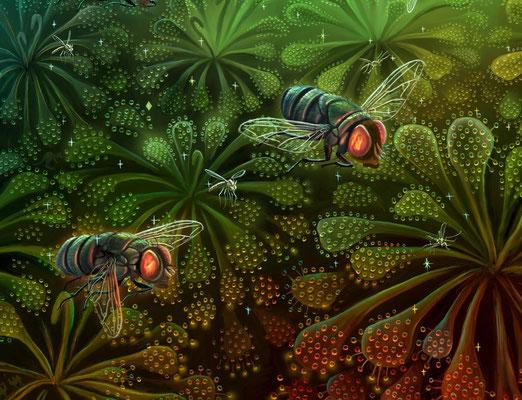 『食虫植物のわな』イラスト