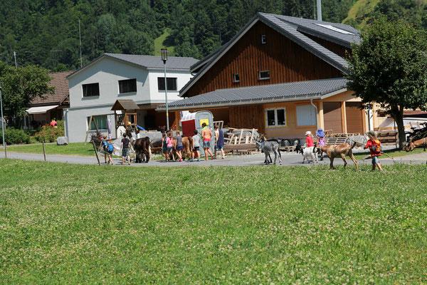 Erster Ausflug zum Diesbachfall