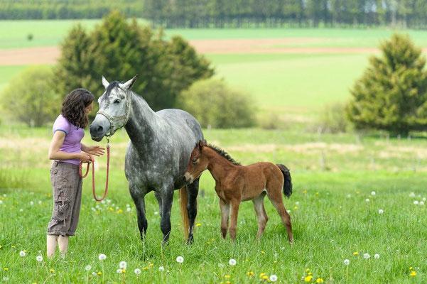 22.5.2012 Chamel mit Mama Fatouna (c) Pferdefotograf