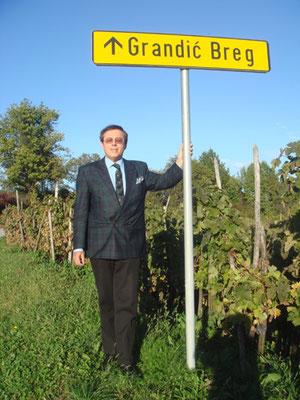 wein kroatien kroatische weine weinspezialitäten muskateller rhein riesling rheinriesling chardonay grandic breg pecevar weingut goldmedaillen
