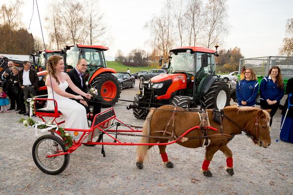 Braut und Bräutigam werden in der Kutsche empfangen