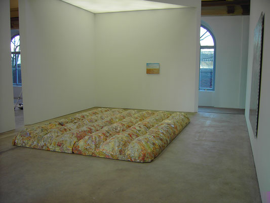 Installation view, 1 acre, 300 x 400 x 30 cm, Galerie Dogenhaus, 2006