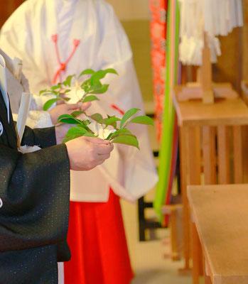 山梨県武田神社結婚式神殿にて玉串奉納