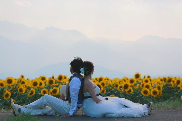 明野ひまわりフェスティバル 明野ひまわりロケ フォトウェディング 結婚写真 前撮り 夕日を浴びて ひまわり畑