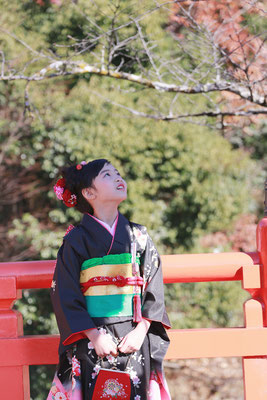 7歳七五三武田神社の橋