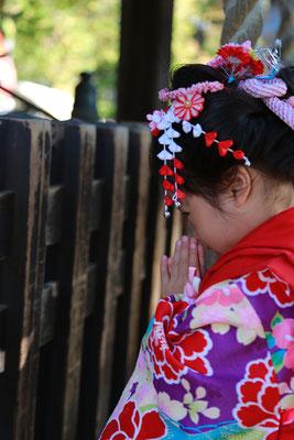 お詣りをする三歳女の子七五三撮影